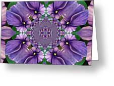 African Violet Wave Greeting Card