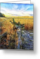 After Big Thaw Greeting Card
