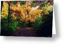After Fall II Greeting Card