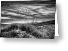 After Sunset In B And W Greeting Card
