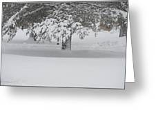After The Blizzard Greeting Card