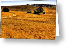 After The Harvest Greeting Card