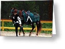 After The Joust Greeting Card