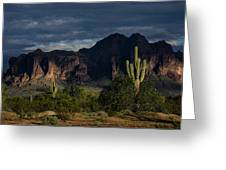 After The Rain In The Superstitions  Greeting Card