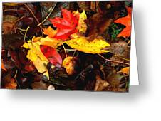 After The Rains Of Autumn Greeting Card