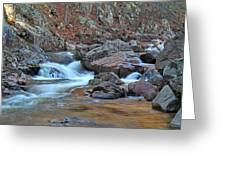 After The Rains On Pickle Creek 1 Greeting Card