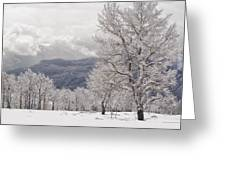 After The Storm 3 Greeting Card