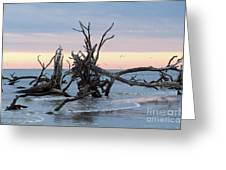 After The Storm At St. Helena Greeting Card