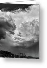 After The Storm Bw  Greeting Card