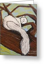 After The White Squirrel Festival Greeting Card