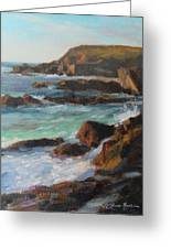 Afternoon Light Point Lobos Greeting Card by Anna Bain