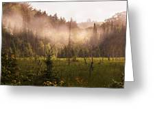 Afternoon Mist Greeting Card
