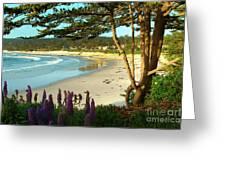 Afternoon On Carmel Beach Greeting Card