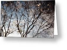 Afternoon Reflection II Greeting Card