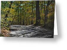 Afternoon Shadows - Oconne State Park Greeting Card