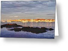 Afternoon Sun On Marblehead Neck Greeting Card