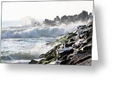 Against The Rocks Greeting Card
