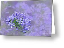Agapantha Lilac Pastel By Kaye Menner Greeting Card
