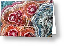 Agate Inspiration - 16a Greeting Card