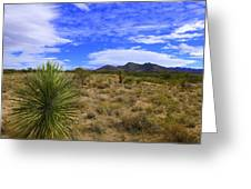 Agave And The Mountains 3 Greeting Card