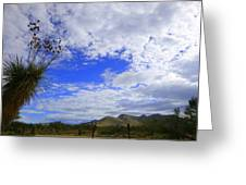 Agave And The Mountains Greeting Card