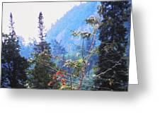 Agawa Canyon Greeting Card