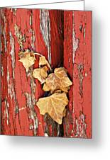 Aging Together Barn  Greeting Card