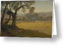 A_golden_summer_day_near_oakland Greeting Card
