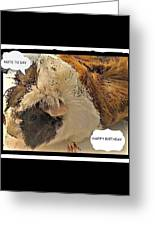 Ahh Guinea Pig Greetings Greeting Card