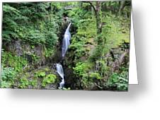 Aira Force Waterfall, Aira Beck, Ullswater, Lake District Greeting Card