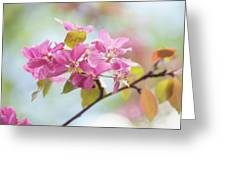Airy Spring 1 Greeting Card