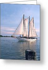 Aj Meerwald Sailing Up River Greeting Card