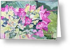 Ajisai Color-magenta Greeting Card