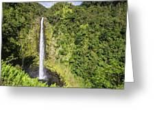 Akaka Falls, Hawaii Greeting Card