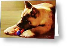 Akita Puppy Greeting Card by Suni Roveto
