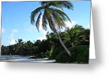 Akumal Sur Beach 1 Greeting Card