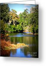 Alafia River Greeting Card