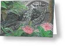 Alameda Gardens, Gibraltar Greeting Card