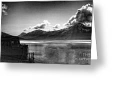 Alaska Black  Greeting Card