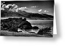 Alaska Bw Grain  Greeting Card