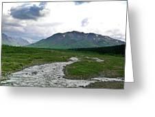Alaska Denali National Park Landscape 1 Greeting Card