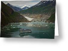Alaska Endicott Glacier Greeting Card