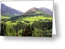 Alaska Scenery II Greeting Card