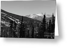 Alaska Wilderness Bw Greeting Card