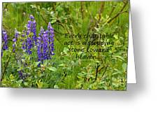 Alaskan Lupine Heaven Greeting Card