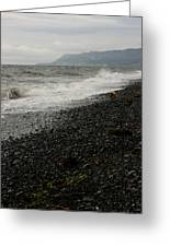 Alaskan Rock Beach Greeting Card