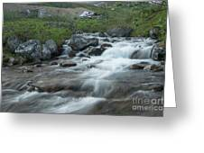 Alaskan Stream Greeting Card