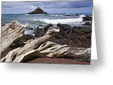 Alau Islet, Drift Wood Greeting Card