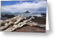 Alau Islet, Driftwood Greeting Card