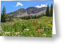 Albion Summer Flowers Greeting Card